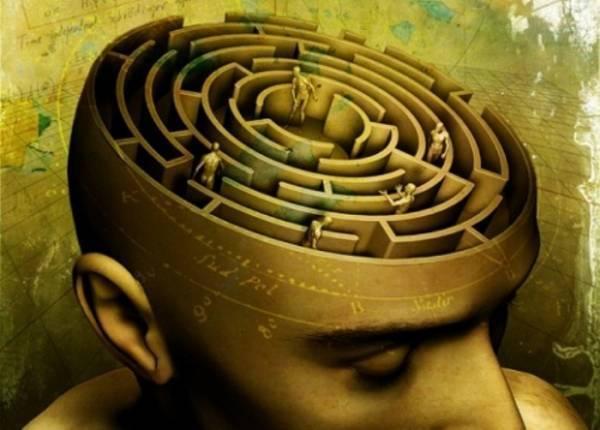 psychology-studies-brain